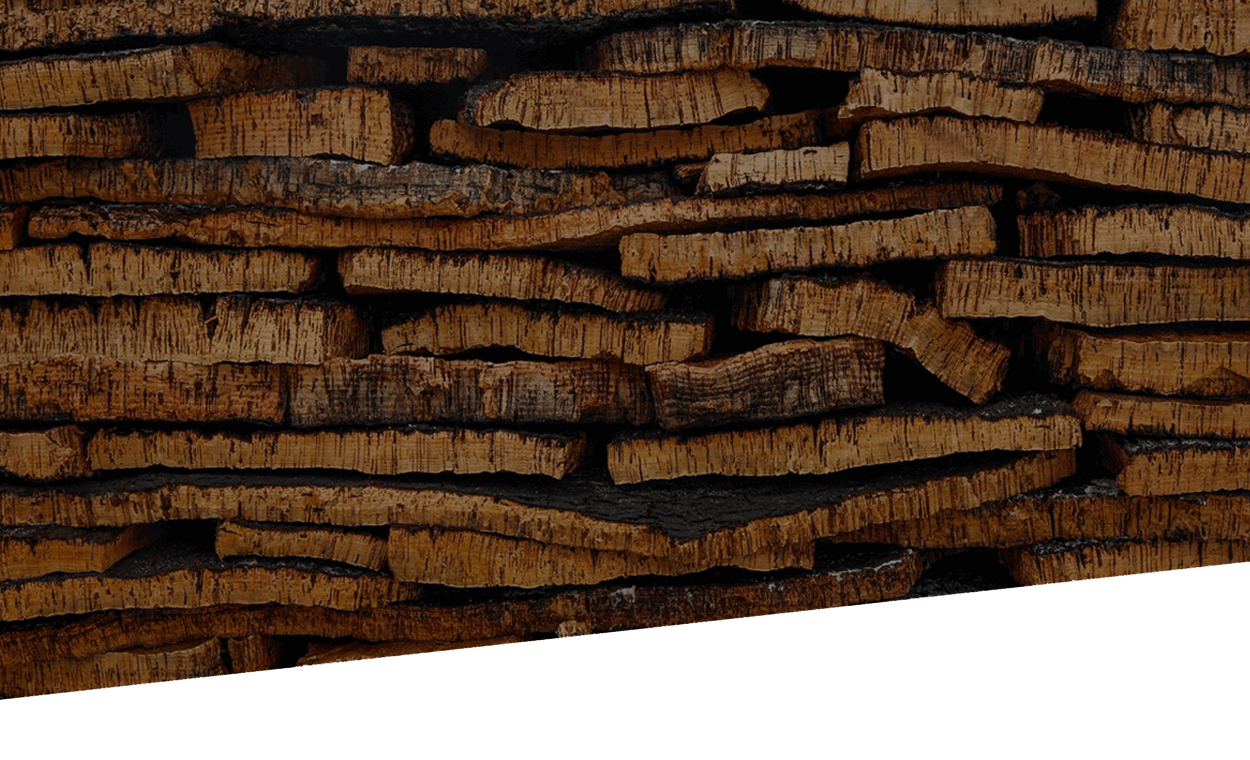 cork-tree-header